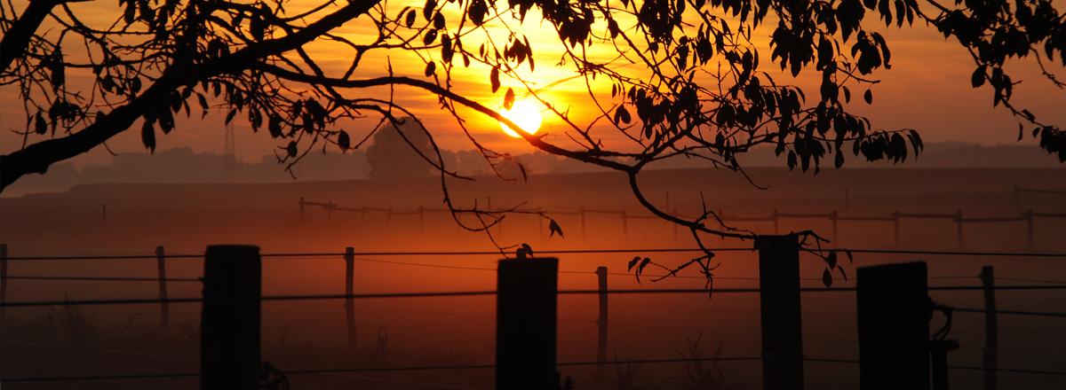 Sonnenuntergang auf der Reitanlage Birkenmayer